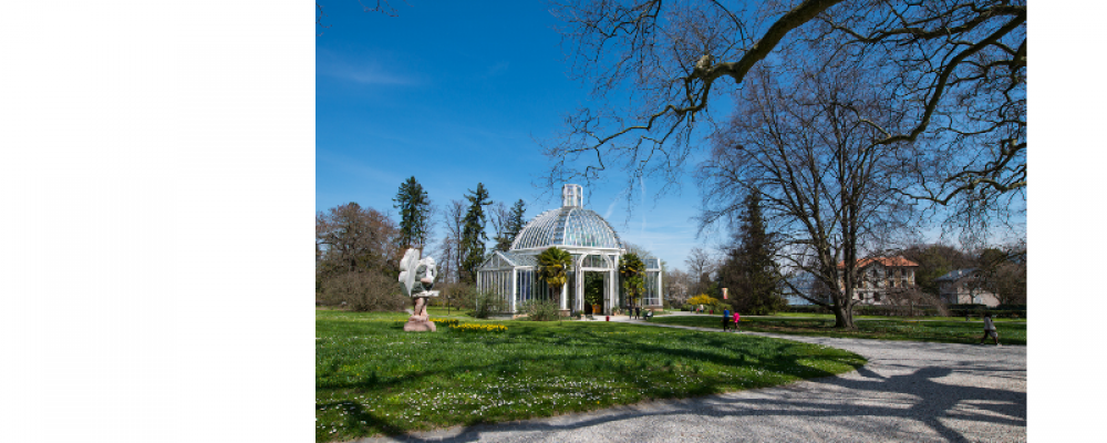 Guided Tour of Geneva's Botanical Gardens with Hester Macdonald