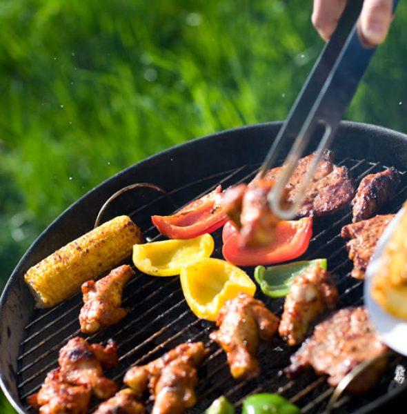SUMMER BARBEQUE/PICNIC